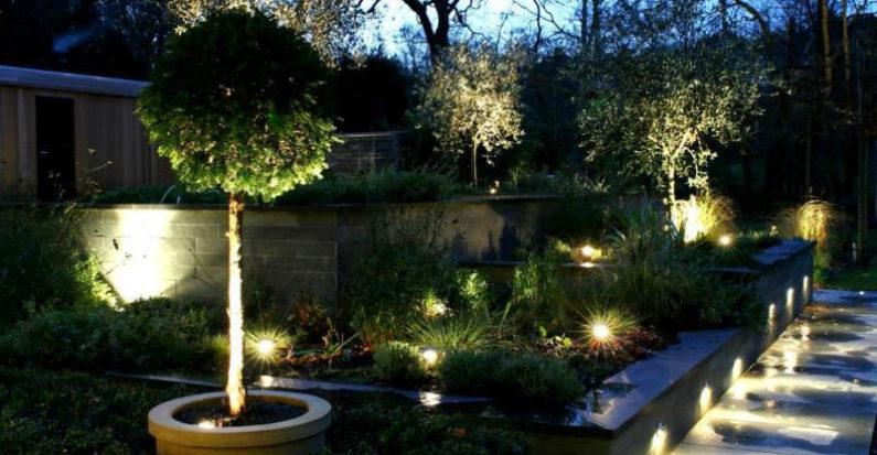 Des ampoules led au jardin
