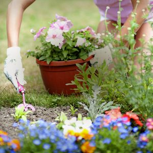 Aménager son jardin en printemps